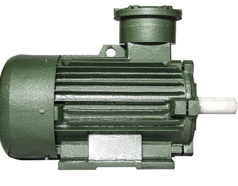 Heat resistant motor