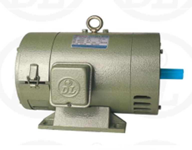 Electric DC Motor