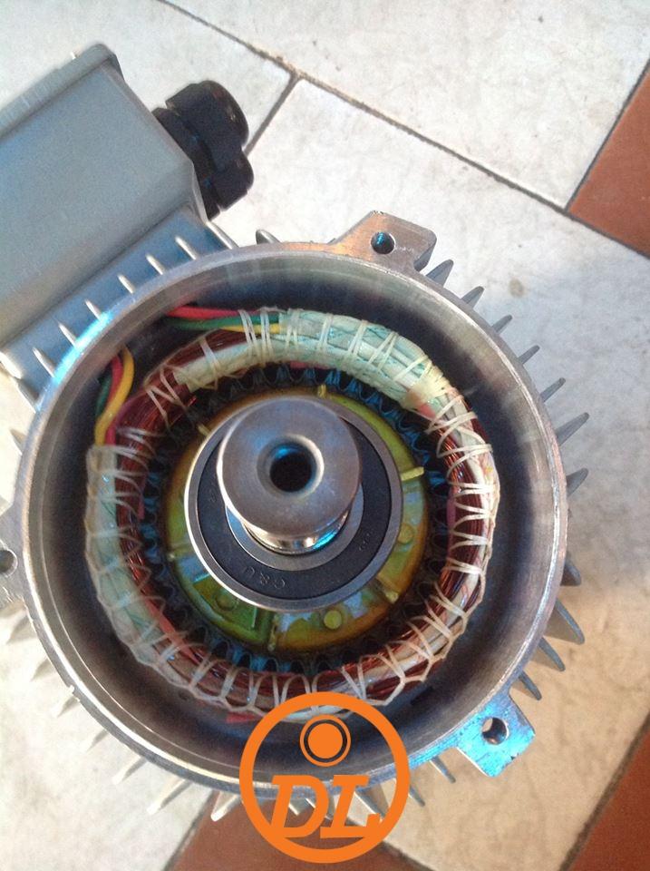 roto motor dolin